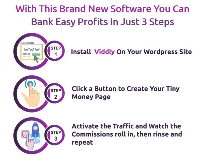 Viddly Affiliate Store Software & OTO by Seun Ogundele